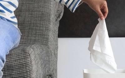 Sem rinite: dicas de limpeza para evitar crises