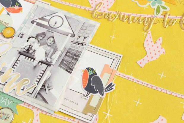 bird-frame