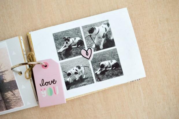 puppy-love-mini-9