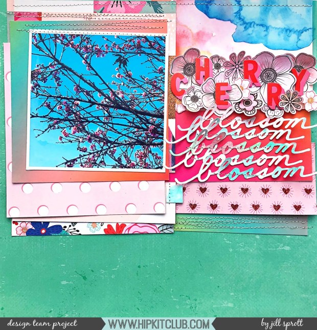 HKC Jill S Cherry Blossom