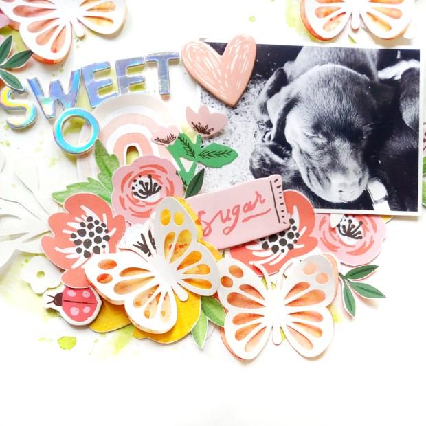 sweeto-cutfile3