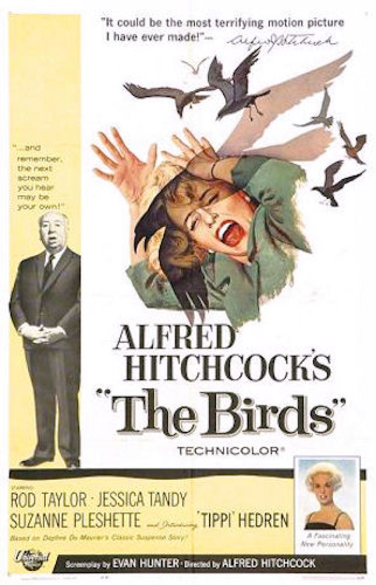 Birds US Movie Poster, Alfred Hitchcock