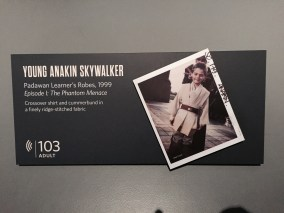 Young Anakin Skywalker card