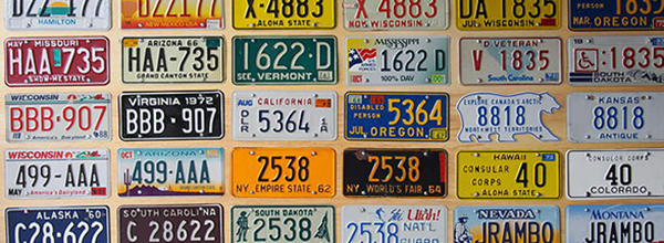 world's largest license plates