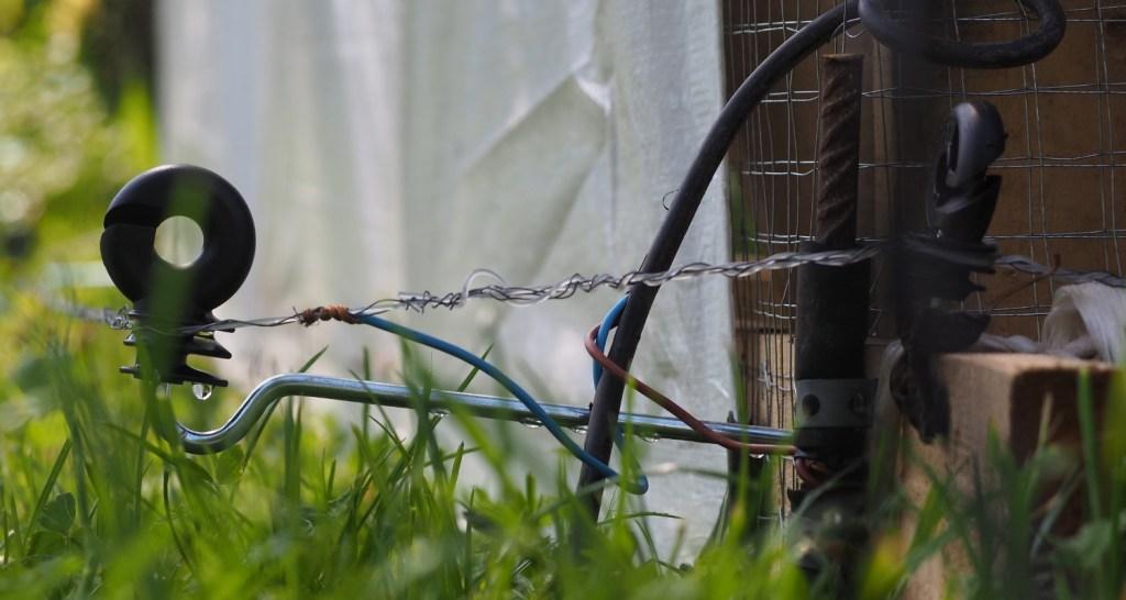stromzaun hühner erdung weidezaungerät
