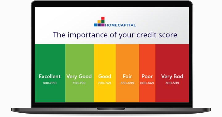 A guide on your credit score