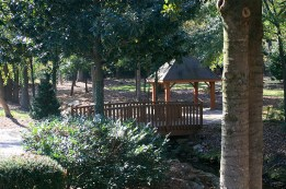 Mineral Springs Park