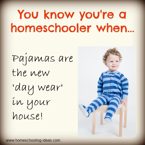You know you're a homeschooler when!