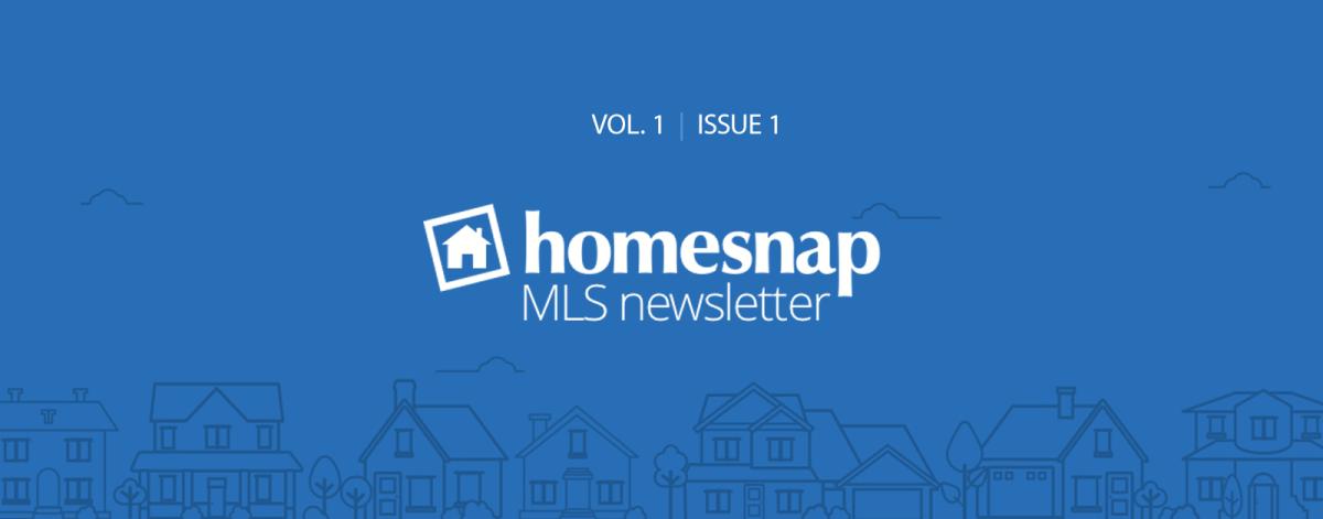 homesnap-newsletter-hero-vol-1-issue-1