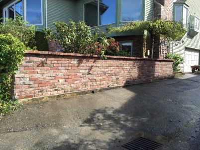 Reclaimed brick garden wall. Beautiful and warm but not very durable.