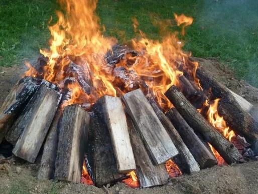 remove tree stump by burning