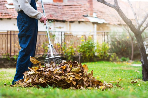 cleaning projects for fall yard cleaning