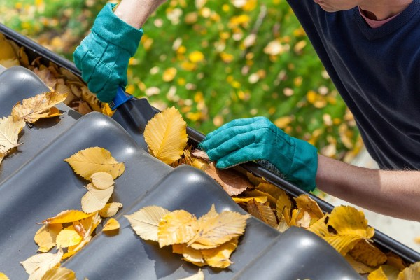 cleaning projects for fall