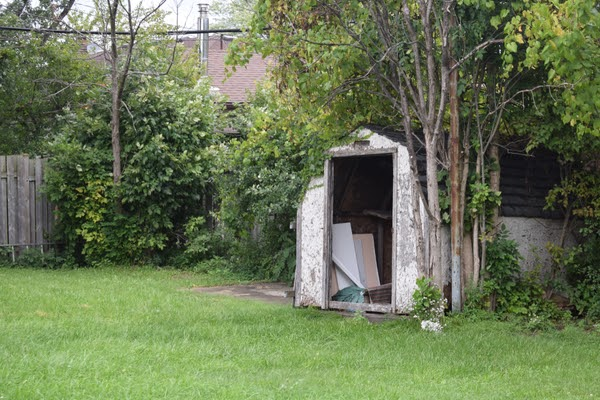 run down shed in unkempt backyard