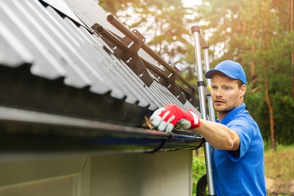 pro cleaning gutters