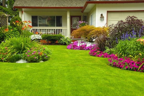 front of home beautiful flowers easy curb appeal updates for spring