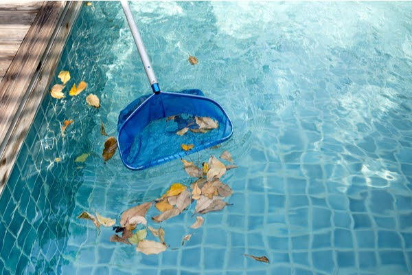 cleaning leaves from pool with skim
