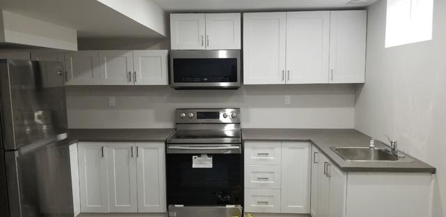 basement suite kitchen