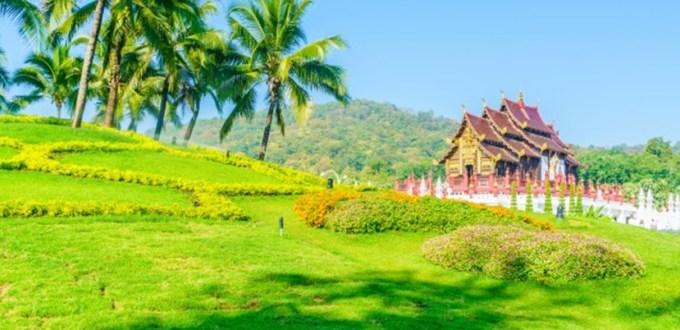 泰國清邁,養蜂聖地