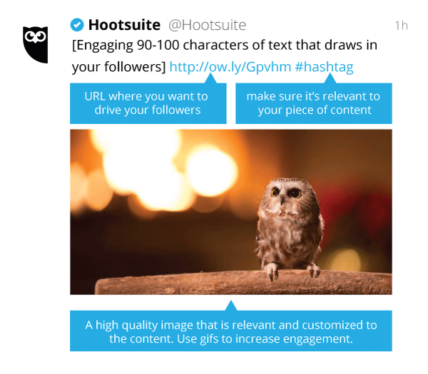 social media etiquette - shareable content