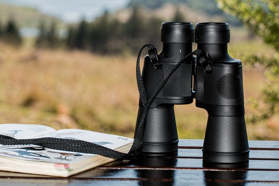 Binoculars for bird watching