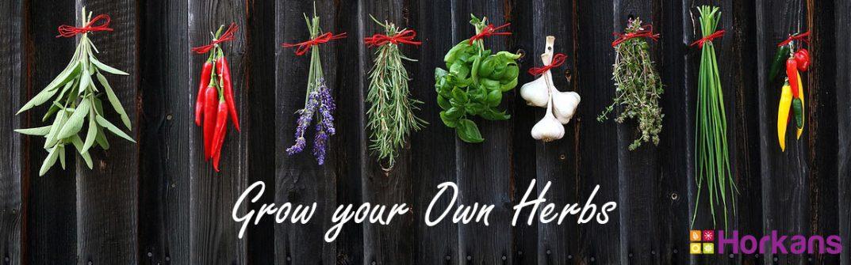 Horkans Grow Herbs