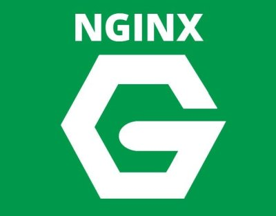 Logo NGINX-Blog HostDime