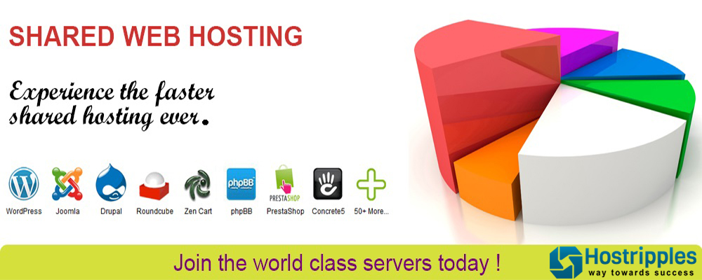 Web Hosting, Shared Web Hosting ( $1 Web Hosting ) Hostripples – $1 Shared Web Hosting, Hostripples Web Hosting