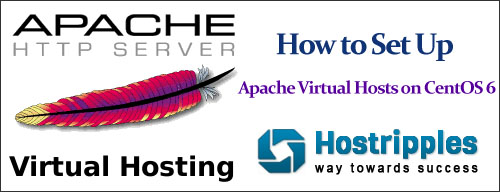 to set up Apache Virtual Hosts on CentOS 6, How to set up Apache Virtual Hosts on CentOS 6, Hostripples Web Hosting
