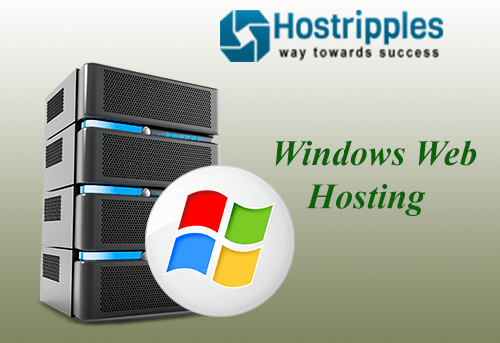 Steps involved in Windows Web Hosting, Hostripples Web Hosting