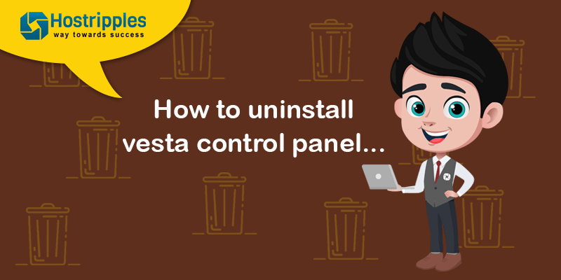 How to uninstall Vesta Control panel, Hostripples Web Hosting