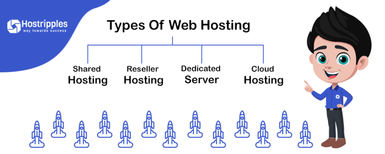 Host a Website, How to Host A Website | Web Hosting Guide to Host Your Own Website, Hostripples Web Hosting