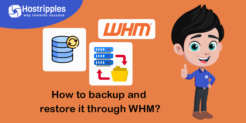 How to backup and restore it through WHM?, Hostripples Web Hosting
