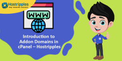 Introduction to Domain Aliases in cPanel, Hostripples Web Hosting