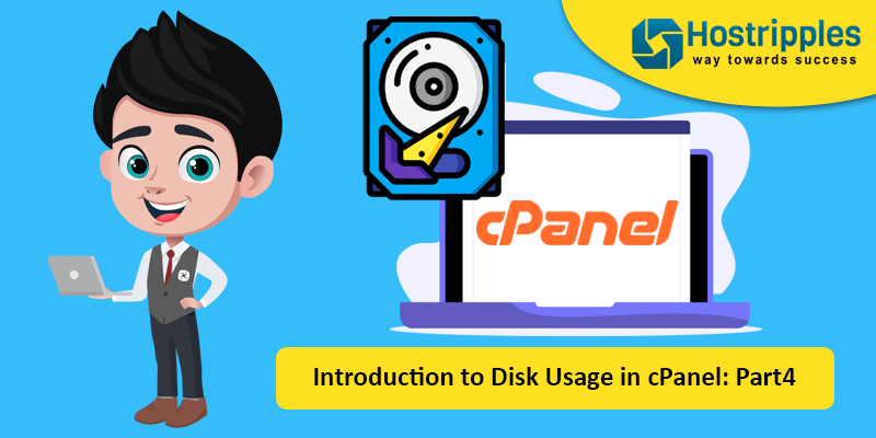 Introduction to Disk Usage in cPanel: Part4, Hostripples Web Hosting