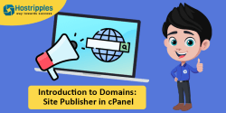 Introduction to Addon Domains in cPanel – Hostripples, Hostripples Web Hosting