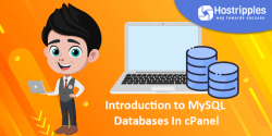 Databases : Introduction to phpMyAdmin in cPanel, Hostripples Web Hosting
