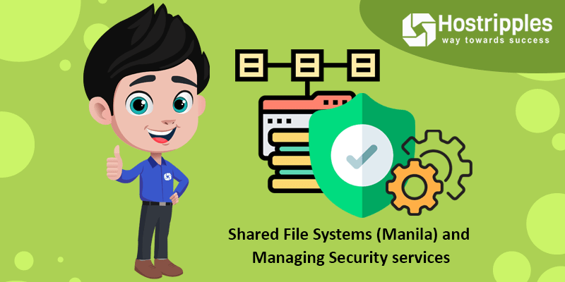 Shared File Systems (Manila) and Managing Security services, Hostripples Web Hosting