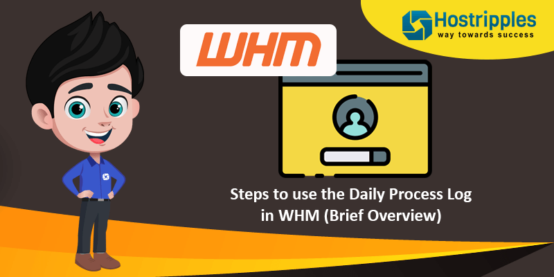 Steps to use the Daily Process Log in WHM (Brief Overview), Hostripples Web Hosting