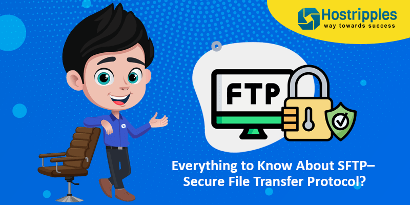 Everything to Know About SFTP– Secure File Transfer Protocol?, Hostripples Web Hosting