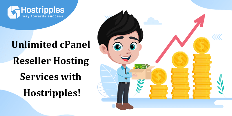 Unlimited cPanel Reseller Hosting Services with Hostripples!, Hostripples Web Hosting