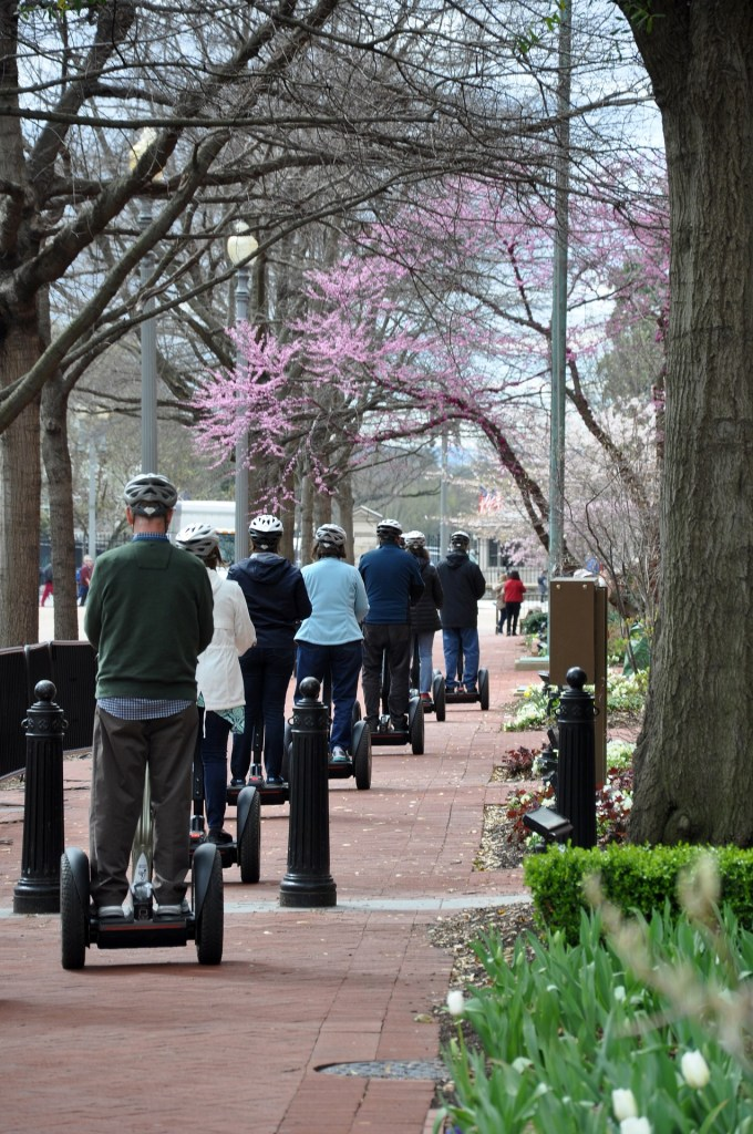 segway group traveling on a brick side walk with purple flowers overhead