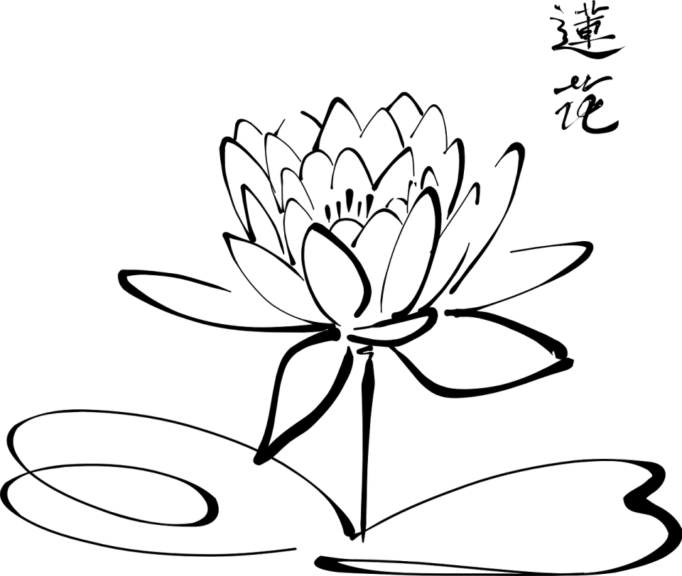 black and white lotus flower and Chinese calligraphy