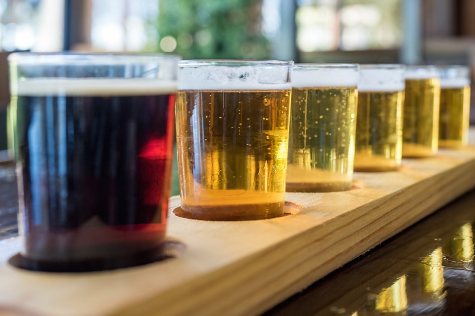 Beer samplers in small glasses individually placed in holes fashioned into a unique wooden tray. Focus is on the backlit light beers, featuring some residual effervescence.