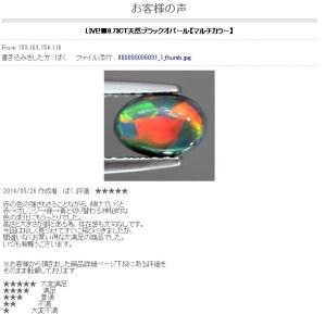 世界の各種宝石をご紹介しております - お客様の声 - Internet Explorer 20140526 95958.bmp