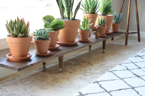 Indoor plant tray