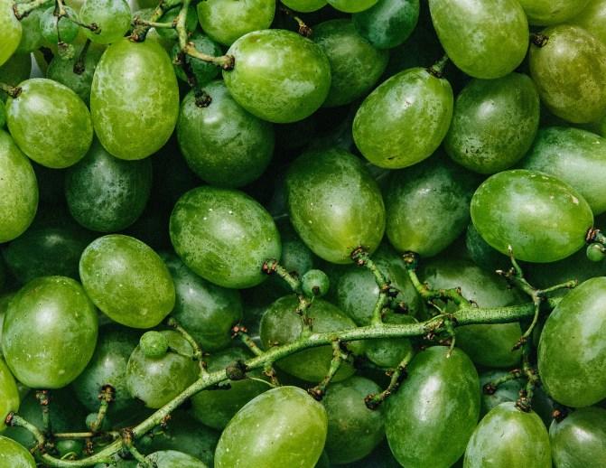 Fancy hunkeren stock beeld van groene druiven