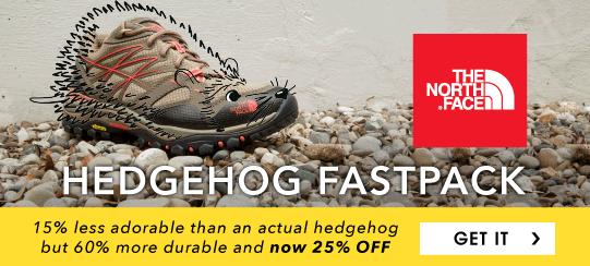 moosejaw-hedgehog-fastpack.png