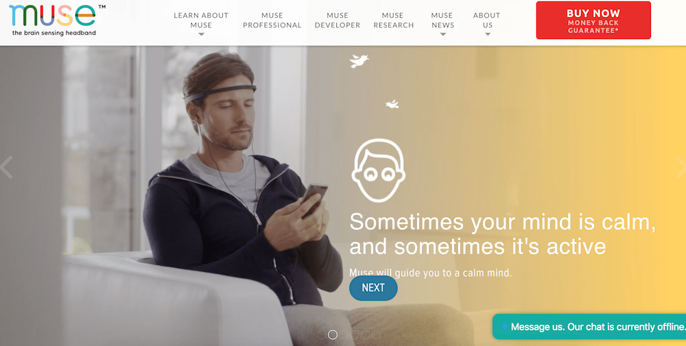 Choose Muse Shopify store  16 of the Best Shopify Stores to Inspire Your Own choosemuse