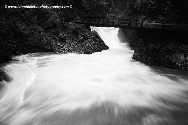 Blejski Vintgar gorge, Gorje, near Bled, Slovenia. . The 1.6 km long Vintgar gorge was carved through the vertical rocks of the Hom and Bort hills by the Radovna River.